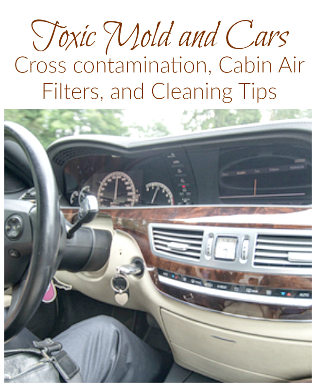 Wondering what to do with your car after a mold exposure ? How about keeping your car allergy-friendly?