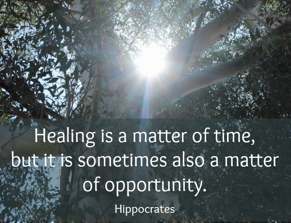 Healing is a matter of time quote by Hippocrates