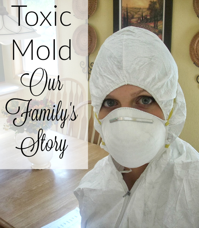 Mold In Bathroom Harmful our toxic mold exposure - timeline of events - it takes time