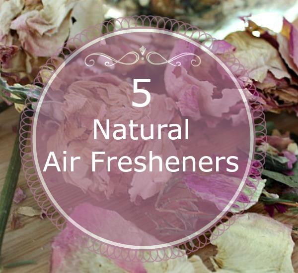 5 natural air fresheners PT