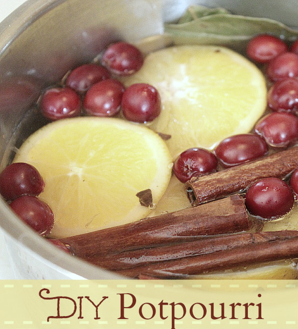 Create your own simmering potpourri with this simple DIY recipe!