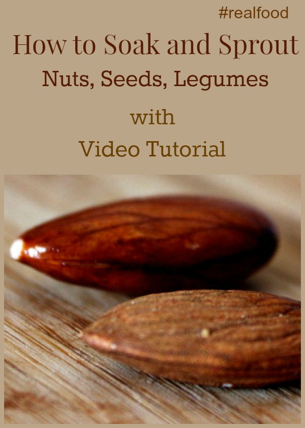 How to Soak and Sprout Nuts, Seeds, and Legumes #realfood