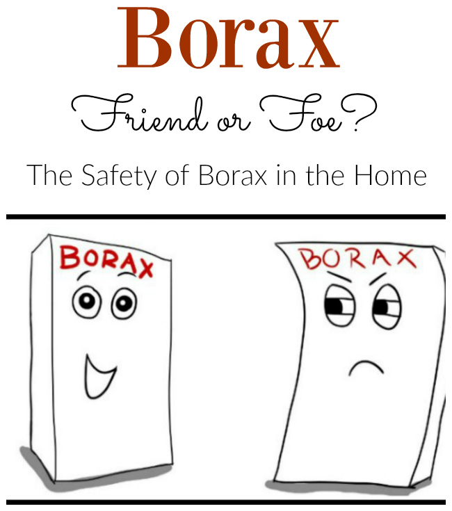 Is Borax safe to use in your home? Find out the pros and cons of  sodium borate!