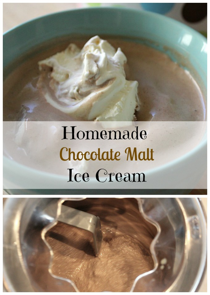 Homemade chocolate malt ice cream with cream and/or yogurt
