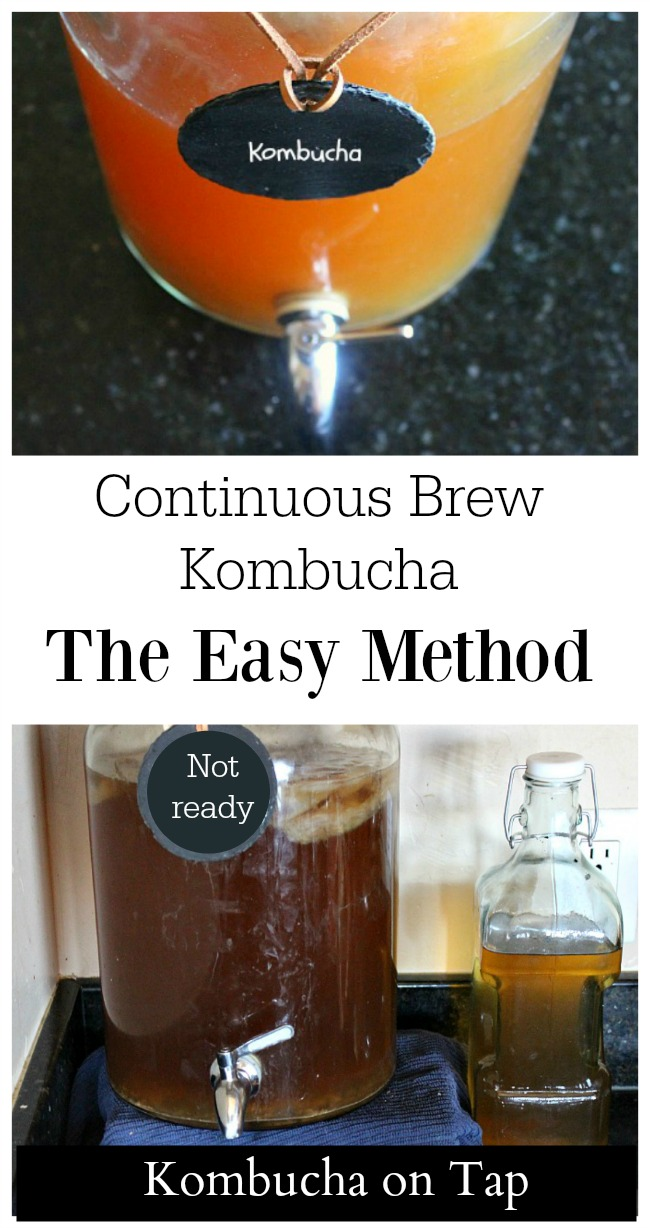 The continuous brew method for making kombucha is ideal for beginners or those who are experienced. Find out how to keep kombucha on tap!