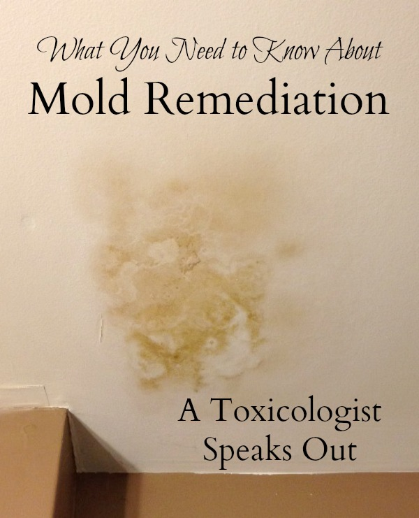 Does mold remediation work? A leading toxicologist encourages consumers to be cautious.