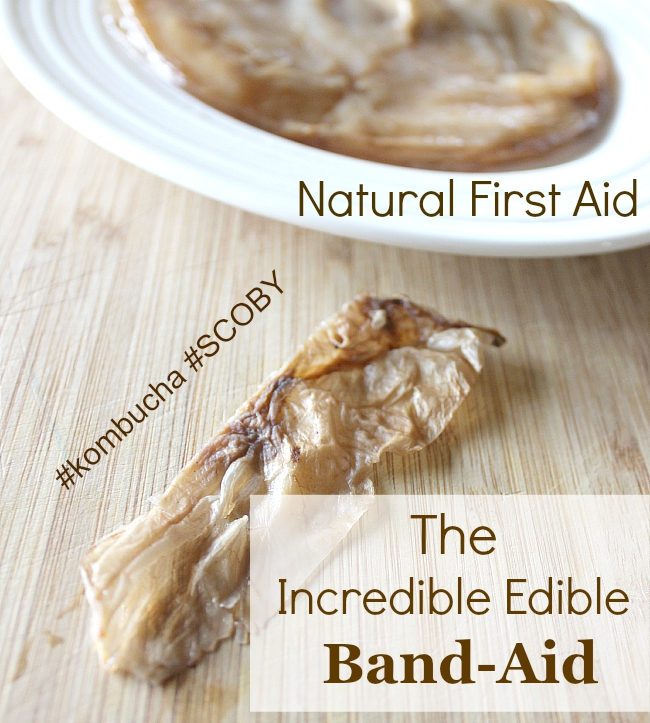 Got Kombucha?  Extra SCOBY? Enjoy Natural Living? Try These Incredible Edible Band-Aids @naturalliving
