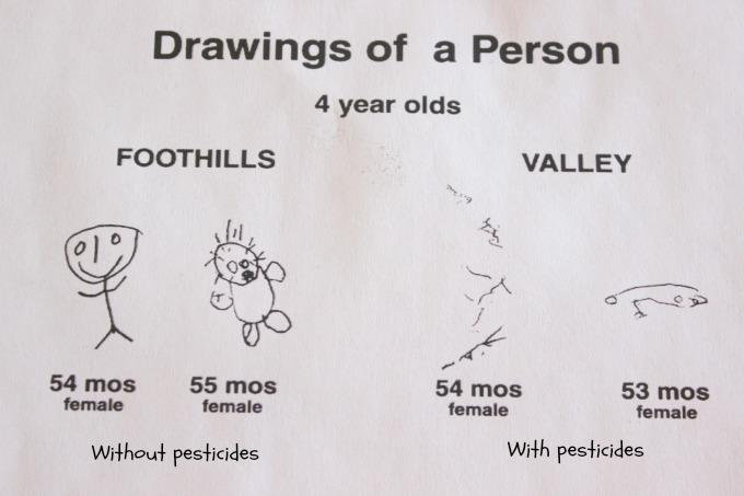 Pesticide Study Drawings