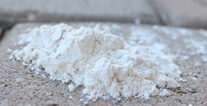 Diatomaceous Earth -What It Is and How to Use It