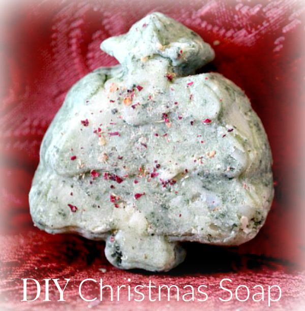 Enjoy making this simple DIY Christmas gift using your favorite natural soap!
