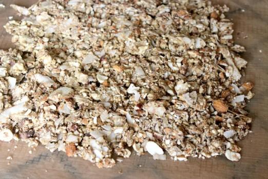 Grain-free granola in dehydrator
