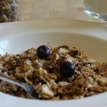 Grain-free granola with raw milk