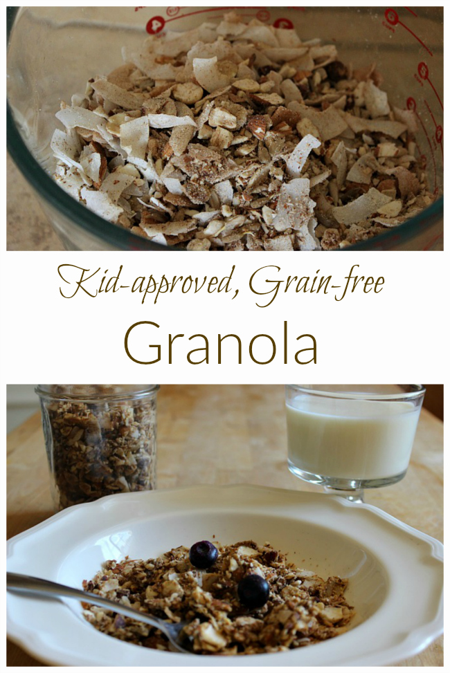 Your family will love this kid-approved GAPS and Paleo-friendly granola. Great for snacking!