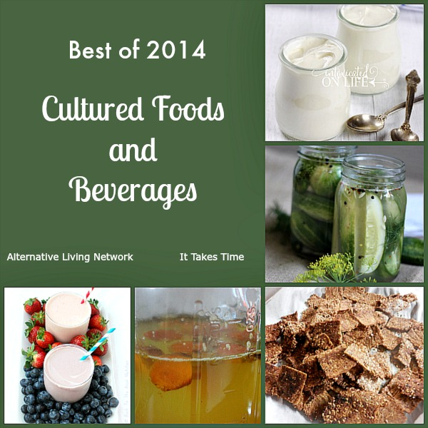 Best of Cultured Foods and Beverages ITT