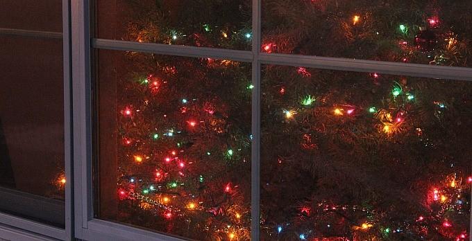 DIY Cinnamon Christmas Potpourri