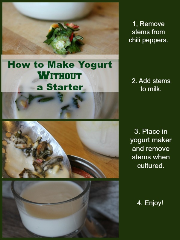 How to Make Yogurt Without a Starter