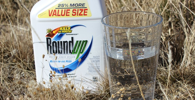Are You Roundup Ready?