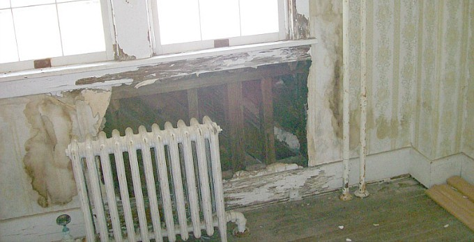 Haunted House? Could It Be Toxic Mold?