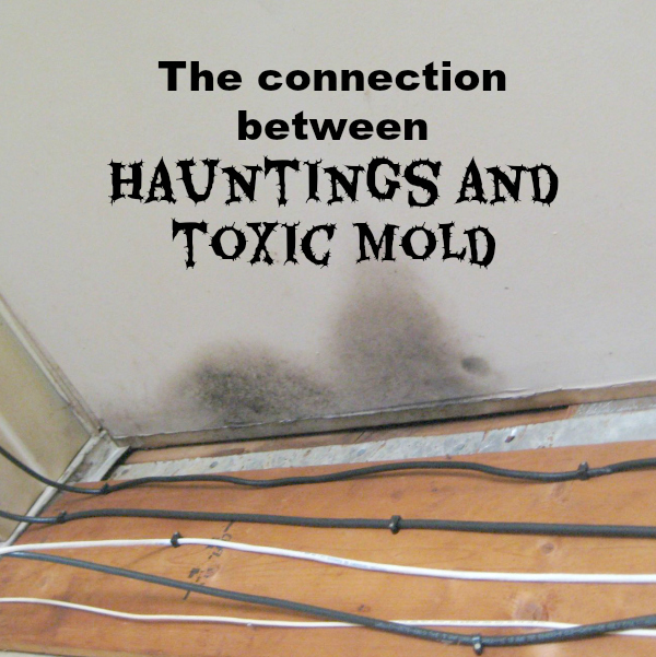 Is there a connection between toxic mold and hauntings?