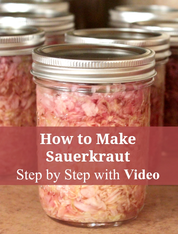 Learn to make your own sauerkraut with this tutorial and video #sauerkraut