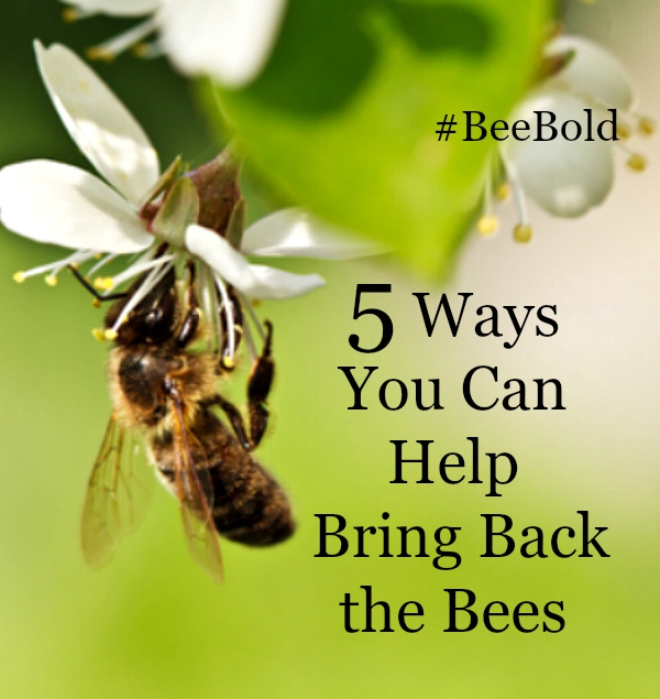 You can help restore our pollinators #beebold #FriendsoftheEarth