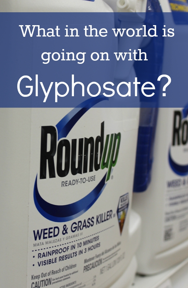The World Health Organization says glyphosate is a Group 2A carcinogen. What are countries around the world doing in response What is the United States doing #gmo #glyphosate