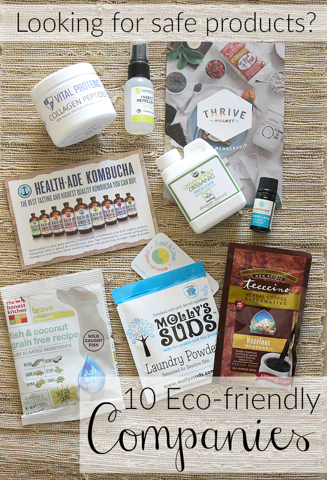 These 10 companies are blazing the trail when it comes to providing organic and natural products. Find out some of the stories behind these pioneers.