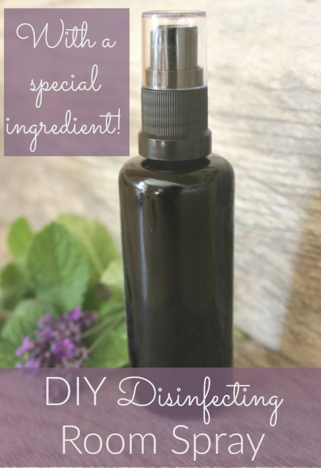 Avoid the harsh chemicals and create your own disinfecting spray using this surprise ingredient!