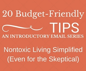 Budget_Friendly_Web