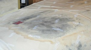 Mold on mattress 1