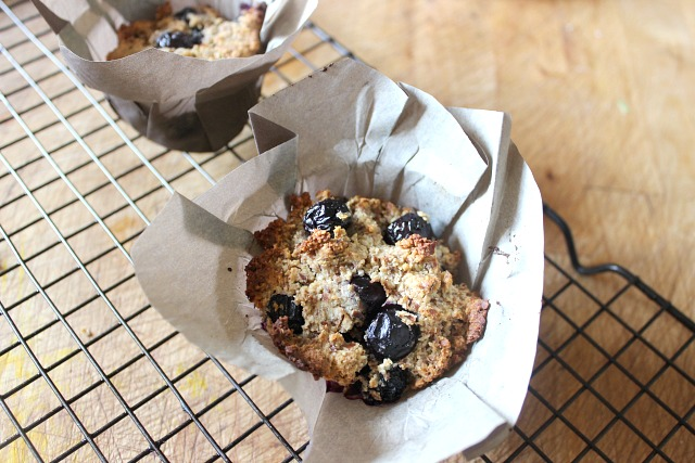 Paleo lemon blueberry muffins in lotus cups