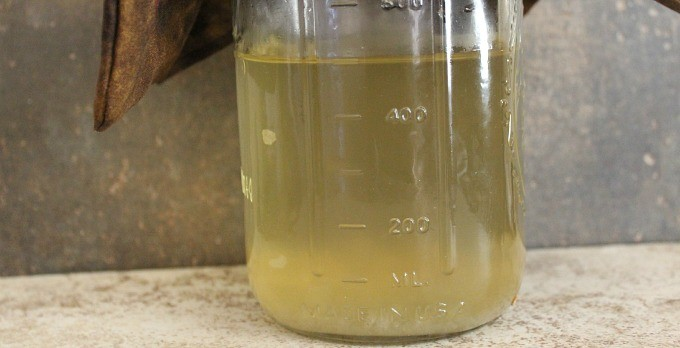 Water Kefir: Oxygen or No Oxygen?